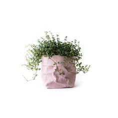 Uashmama Washable Paper Bag Rose - The Future Kept - 10