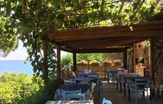 Inspired by Italy's Delia: a food tour of Cilento, Campania