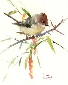 Yuhina Bird, Original watercolor painting, 9 x 11 in, brown bird art yuhina bird painting by ORIGINALONLY on Etsy