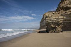 San Gregorio State Beach, California
