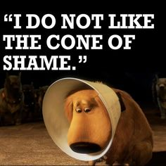 Up Cone of Shame