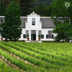 after i win the lottery, this is where you can find me Constantia Valley, South Africa Cape Town Accommodation, Holland, South African Homes, Cape Dutch, Dutch House, Dutch Colonial, Spanish Colonial, English House, Adventure Is Out There