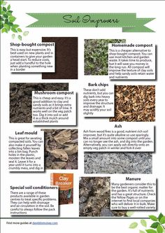 Infographic on soil improvers - how to improve the condition of your garden soil