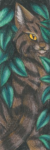 Brambleclaw Bookmark- whoever created this bookmark is amazing.