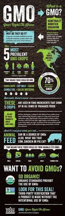 GMO Explained (thanks to Food Babe for the share)