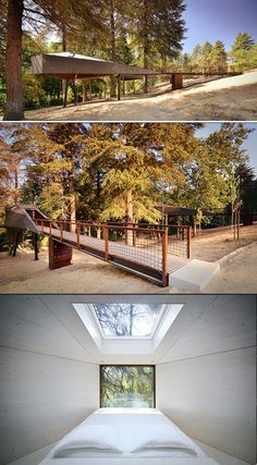 Tree Snake Houses in Pedra Salgadas - Portugal