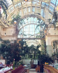 10 Cafés im 1. Bezirk, die auf euch warten Vienna Austria, Winter, Cathedral, Travel Destinations, Places To Visit, Fair Grounds, City, Photography, Instagram