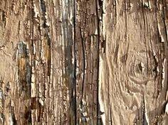 wood textures - Recherche Google