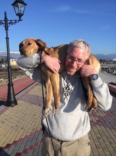 Stray dog in Sochi wins heart of American man who plans on bringing her home » DogHeirs | Where Dogs Are Family « Keywords: Olympics, Sochi, stray dog, Russia