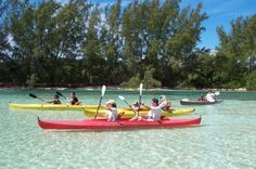 Grand Bahama Island Jeep and Kayak Adventure from Freeport Traipse around Grand Bahama Island by Jeep and kayak on this 6-hour off-road adventure from Freeport. Drive through the island's capital by open-top Jeep in convoy with your guide, veer off-road through Lucayan National Park, and paddle by kayak through inland creeks of the wildlife-filled mangrove forest. Then kick back on Gold Rock Beach with a picnic lunch, sunbathing and swimming in the tropical Caribbean ...