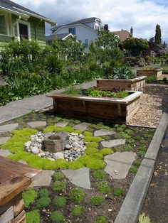 Parking strip vegetable garden with water and plants for pollinators by Erin Lau Landscape Design- Seattle