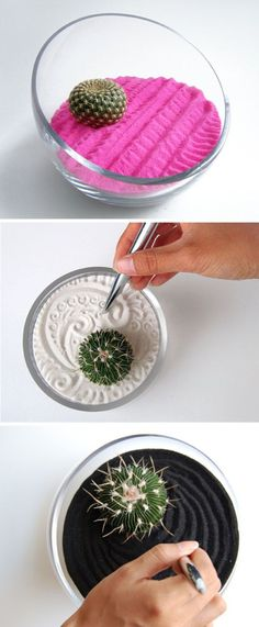 love the idea of just one (or two) succulents in colorful sand!