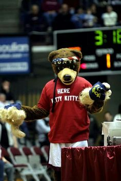 "The University of Montana Grizzlies mascot, Monte having fun at the Bobcat/Griz game. ""Here kitty kitty."" = ) Go Griz!!"