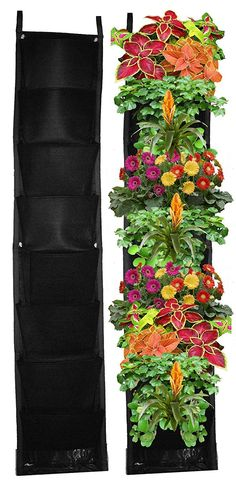 Living wall planters ideas, indoor hydroponic gardening.