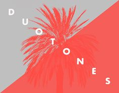 "Check out new work on my @Behance portfolio: ""Attitude Duotones"" http://be.net/gallery/54956823/Attitude-Duotones"