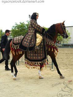 Inspiration for royal riding clothes. The Rancho Murieta Arabian/Half-Arabian horse show