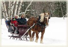 """""""one horse open sleigh""""...I Remember having one of these and Tipping over in it,very scary!"""