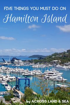 Five things you must do on Hamilton island - there's more to Hamo than relaxing by the pool with a cocktail in hand...