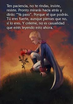 Little Prince Quotes, The Little Prince, Inspirational Phrases, Motivational Phrases, Love Quotes From Literature, Favorite Quotes, Best Quotes, Quotes En Espanol, Postive Quotes