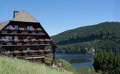 Alemannenhof Hotel - try their black forest cake