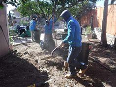 Garden Maintenance, Santa Barbara, Yard Maintenance