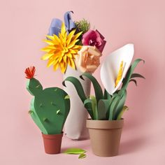 Campaña Mercado Central by María Laura Benavente, via Behance