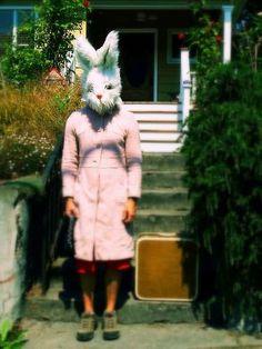found rabbit girl