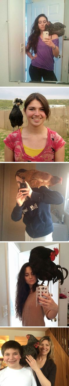 "I wasn't aware of ""shoulder chickens"" until now. This is a thing? Cock-a-doodle-do?! (I... I dunno...)"