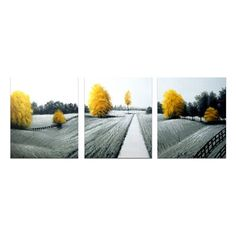 Designart Canada OL1154 Stand Out Black White and Yellow Landscape Oil Painting (3 Piece)