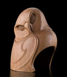 Te Ruru (New Zealand Owl) by Todd Couper
