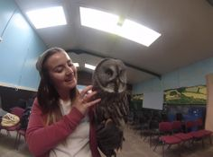 Owl Encounter at Eagle Heights in Kent #experiencedays #kent #birdsofprey #owls