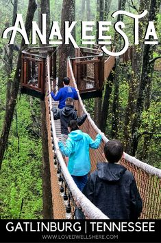 Anakeesta is a magical place, high up in the mountains above Gatlinburg. With shops, food and drink, and family-friendly activities like the Tree Canopy Walk and Rail Runner, there's truly something for everyone. #gatlinburg #familytravel #tennessee