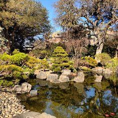 Japanese Tea Garden at Central Park in San Mateo, CA