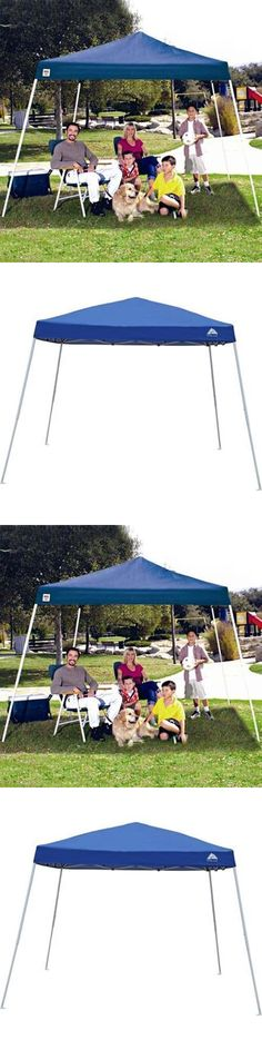 Canopies and Shelters 179011 Ozark Trail 10X10 Slant Leg Instant Canopy Gazebo Shelter *New  sc 1 st  Pinterest & Canopies and Shelters 179011: Aqua Quest Defender Tarp Large 13 X ...