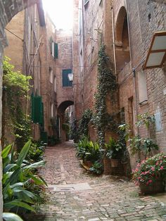 Small street in Sienna, Province of Siena , Tuscany region, Italy