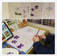 activités de botanique pour enfants Monopoly, School Posters, Zoology, Botany, Preschool, Sunday, Youth, Children