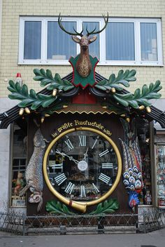 World's Largest Cuckoo Clock Wiesbaden    It works and it strikes every 1/2 hour! It was placed there in 1946.  Of course this is where I bought my cuckoo clock!!