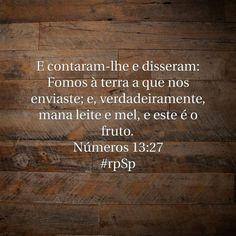 http://bible.com/212/num.13.27.ARC