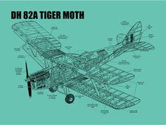 DH 82A Tiger Moth