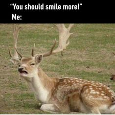20 Funny Photos for Your Thursday #humor