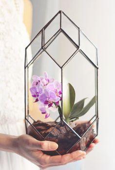 Handmade Geometric Terrariums