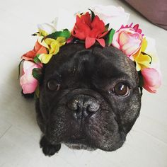 Trying on my outfit for the Swedish holiday Midsommar.