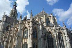 tonneke breda - Hoogstraten, Belgium, MultiMedia Specialist | about.me