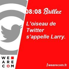 Savoir inutile en communication L'oiseau de Twitter s'appelle Larry. Larry, Twitter, Birds