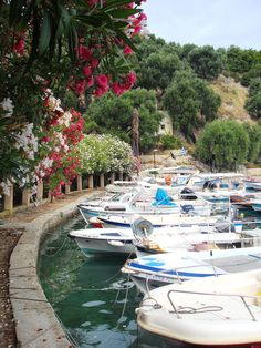 Marina of Parga town, Preveza region, Epirus, Greece Greece Tourist Attractions, Greece Pictures, Europe Continent, Greek Isles, Parthenon, Travel And Leisure, Greece Travel, Beautiful Beaches, Wonderful Places