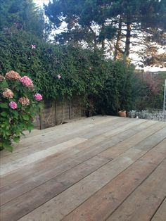 Scaffold board decking to introduce a more rustic feel to an otherwise contemporary garden.