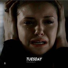 Katherine + Elena quote: Tuesday