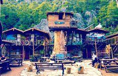 Kadir's Treehouse – Olympos, Turchia