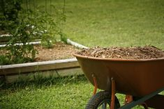 Cover Your Soil With Mulch | Gardening Tips To Earn Your Most Fruitful Yield Yet