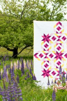 Is there anything better than quilts in the wild? Here's the Tribal Diamond quilt featured in the 2019 Quilter's Planner Magazine. Modern quilt pattern just waiting for you to put your favorite colors to work! Quilting Projects, Quilting Designs, Quilting Ideas, Native American Rugs, American Art, Southwestern Quilts, Panel Quilts, Quilt Blocks, S Planner